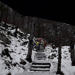 Bohinj, les cascades Savica1801011303 thumbnail