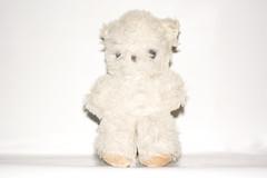 Life Companion. (rawdonfox) Tags: smileonsaturday onpurewhite teddy old faded rawdonfox nikond5200 nikon