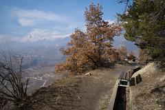 Bisse de Sillonin (Valais) (Toni_V) Tags: m2406587 rangefinder digitalrangefinder messsucher leica leicam mp typ240 type240 28mm elmaritm12828asph hiking wanderung randonnée escursione bisse sue suone bissedesillonin alps alpen sionsierre sittensiders switzerland schweiz suisse svizzera svizra europe bench sitzbank bank ©toniv 2018 180224