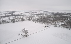 Above Muthill 3 (ShinyPhotoScotland) Tags: nature unitedkingdom gbr composition elegance digikam dji softlight calm areas rawtherapee mutedcolour weather composite peace emotion snow perthshire raw distance dulllight photography affection tranquil rawconversion chilly simplecomplex manipulated contentment vista aspiration equipment serifaffinityphoto harmony strathearn landscape colour calmstill art drone winter scotland muthill contrasts zen highviewpoint shapeandform camera beyond cold serene toned inviting enfuse places skyearth phantom4advanced hdr pure beautiful simple light