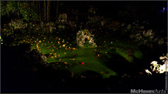 Enchanted Gardens 2017 - 162 (mchenryarts) Tags: arcen dunkelheit entertainment event events farbe fotojournalismus kasteeltuinen laternen licht lichtinszenierung lichtspektakel niederlande parkleuchten photojournalism schloessgaerten show garten laser lasershow