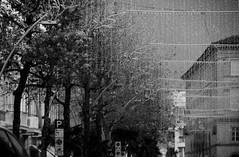città in inverno (enricoerriko) Tags: enricoerriko erriko portocivitanova civitanovamarche civitanovese sea mare adriatico mediterraneo europa pescherecci cielo sky spiaggia nuvole tramonto nyc beijing blackwhite berlin palme lungomare centro storico cittàalta viacivitanova paese collina paesaggio blackandwhite black white bn alberi uccelli pechino moscow paris rome roma us la london beirut lebanon canne verde green celeste red yellow