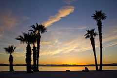 Lake Havasu sunset (BDFri2012) Tags: sunset clouds lakehavasucity lakehavasu arizona palmtrees reflection landscape desert desertsouthwest americansouthwest southwestunitedstates water dusk sun coloradoriver