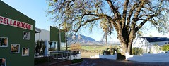 view past the main building and Coach House, Val du Charron, Western Cape