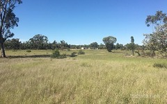 355 Momo Rd, Tomingley NSW