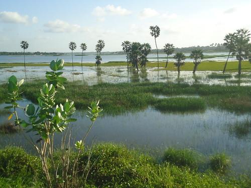Precabura Lagoon 4.