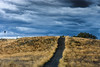 Red Hill, ACT, Australia (paulwood.photography) Tags: oceania landscape storm clouds 306naturalsites australia referenceareasinsideotherprotectedareas australiancapitalterritory protectedareasofvictoria sunset canberra act redhill