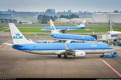 [AMS.2014] #KLM #KL #B738 #PH-BGA #Tureluur.Redshank #awp (CHR / AeroWorldpictures Team) Tags: klm royal dutch airlines boeing 7378k2 wl msn 37593 2569 eng cfmi cfm567b24 reg phbga rmk fleet number ga319 named tureluurredshank history aircraft first flight test n1786b built site renton krnt delivered klmroyaldutchairlines kl config cy180 b737 737 b738 b737800 winglets apron gate planespotting amsterdam schiphol airport ams eham netherlands europe nikon d300s nikkor lightroom raw awp aeroworldpictures
