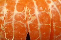 Mandarin Segments (steve_whitmarsh) Tags: orange fruit food macro closeup macromondays citrus