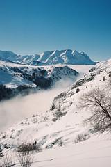 Un Noël dans les Alpes (Hëllø i'm Wild) Tags: analog film 35mm canonae1 kodakportra400 winter snow mountains alps nature hike breathe