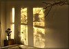 SunDance (Fleur_008) Tags: sun sundance hamburg northerngermany norddeutschland sonyalpha350 licht light love liebe home zu hause