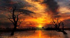 Hochwasserromantik (ellen-ow) Tags: duisburg himmel hochwasser rhein sonnenuntergang flüsse flood sunset landschaft landscape romantik licht light sky ellenow nikond5 oma