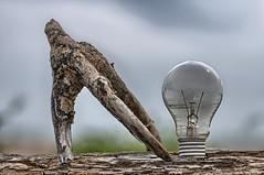 aliens (luporosso) Tags: stilllife lampadina lamp legno wood geometry geometrie greatphotographers