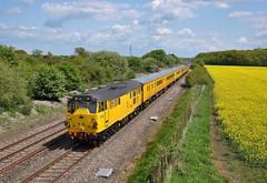 31285. Shrivenham. 17-05-2010 (*Steve King*) Tags: 31285 class 31 network rail test train shrivenham rapeseed field