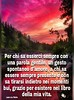 #grazie #buonasera #buona #serata #buonanotte #aforisma #frase #Tiziana #Mosso https://www.facebook.com/MossoTiziana/ #citazione #link #page #facebook (tizianamosso) Tags: citazione tiziana link grazie facebook serata buonasera mosso buonanotte buona frase page aforisma