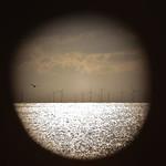 Windfarm, Brighton thumbnail