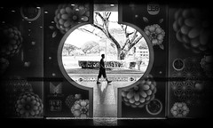 Chinese New Year Street Photography (kieronjameslong) Tags: tree man person people profile silhouette wideangle streetphotography street indoors outdoors portrait pedestrian newyear chinesenewyear lunar lunarnewyear decoration festival holiday urban shoppingmall blackandwhite bnw bw monochrome leica leicaq reallife dailylife reportage streetlevel leicamonochrome