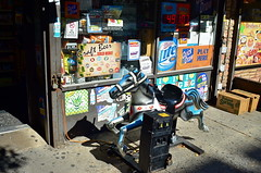 Something For Everyone (MPnormaleye) Tags: mechanical shoppe bodega carryout store window signs pony horse neon nyc queens utata 24mm urban city