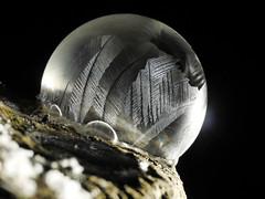 P2060702-Frozen bubble at minus 6 degrees at night (Bine&Minka2007) Tags: bubble seifenblase frost frosty nacht night makro macro olympusmacro60mm