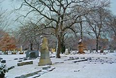 Graceland 9 (cbillups) Tags: gracelandcemetery charliebillupschicago cemetery chicago