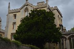 Cambridge (Nick Tsenteme) Tags: cambridge university building architecture studies student england britain uk