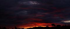 Sunset 2 2 18 #09 Panorama e (Az Skies Photography) Tags: sun set sunset dusk twilight nightfall sky skyline skyscape cloud clouds rio rico arizona az red orange yellow gold golden salmon black riorico rioricoaz arizonasky arizonaskyline arizonaskyscape arizonasunset canon eos 80d canoneos80d eos80d canon80d february 2 2018 february22018 2218 222018 panorama