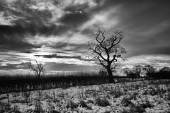 Dramatic.......... (Barry Potter (EdenMedia)) Tags: barrypotter edenmedia nikon d7200 pickering blackandwhite nikonflickrtrophy ryedale