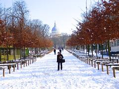 P1390430 PARIS  BALADE , dans les allées enneigés  du jardin du Luxembourg (closier.christophe) Tags: allées neige paris promenade jardinduluxembourg neigeparis parisneige christopheclosierphotos