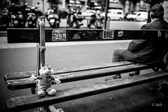 oubliée (Jack_from_Paris) Tags: l2011164bw leica m type 240 10770 leicasummicronm35mmf2asph 11879 dng mode lightroom capture nx2 rangefinder télémétrique bw noiretblanc monochrom wide angle paris 75013 portrait rue street bench banc peluche oubliée bokeh