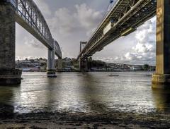 Train or road? (PAUL YORKE-DUNNE) Tags: rivertamar roadbridge railwaybridghe brunel water tidal
