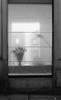 Inside out #2 (Emanuela Pepe) Tags: finestra esterno interno tenda ombre casa stanza luce fiori strada insideout bologna fujix