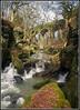 Fairies Chapel (stephen dutch BDPS) Tags: healeydell riverspodden whitworth river rocks gorge viaduct fairieschapel scenic outdoor landscape naturereserve