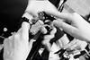 Ais Verona  - Gruner Veltliner-108 (Associazione Italiana Sommeliers - Verona) Tags: aisverona aisveneto grüner veltliner austria willi klinger helmut knall