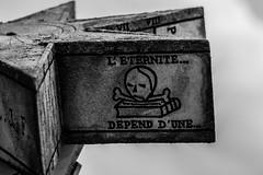 Annecy-0012 (Christophe La Rocca) Tags: annecy leregarddelapierre outdoor art abandon émotion espoir tristesse patrimoine noiretblanc noir bnw black blanc copenhague sombre solitude skeleton regard culte religion