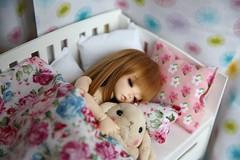 Sweet Dreams ♥ (SunShineRu) Tags: ltf littlefee luna sleeping sp rabbit bed fairyland bjd ball jointed doll yosd cute kawaii