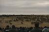 Kopkari; Bulungur, Uzbekistan (erik-peterson) Tags: 2017 adventure buzkashi d3s erikpeterson goat goatpolo horse horses kopkari mud october tashkent ulak uzbekistan