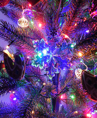 2016 ornament (LeelooDallas) Tags: western australia perth northbridge dana iwachow nikon coolpix s 9200 tree ornament 2017 christmas evening