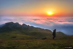 Jon en Gorbea (Jabi Artaraz) Tags: jabiartaraz jartaraz zb euskoflickr pastor perro amanecer niebla pradera montaña nature