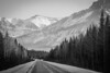 (Marie-Laure Even) Tags: 2017 alberta amériquedunord and arbre bw banffnationalpark black blackandwhite blanc canada december décembre et fjall forest forêt hiver landscape marielaureeven montagne mountain nb nature neige nikond70 noir noiretblanc northamerica paysage road roadtrip route snow travel tree voyage white wild wilderness winter wood гора природа