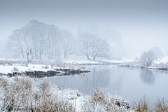 River Brathay Elterwater (tony johnston Images) Tags: cumbria elterwater fujitx2 lakedistrict lakeland landscape mist other places river riverbrathey snow tonyjohnston tree water winter ngc