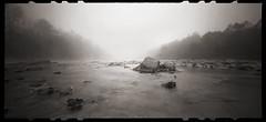 Fog on the River (DRCPhoto) Tags: zeroimage612b pinhole lenslessphotography kodakbw400cn 120film cheatriver westvirginia