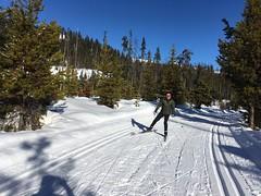 A 20 km run (misiekmintus) Tags: ski skiing manningpark bccanada sport