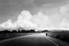 Road to Heaven (Estrella Morales) Tags: black blackwhite blanco road lights clouds cadiz calm countryside rain travel time trees nature photograph monocromo meadow oldman libertad