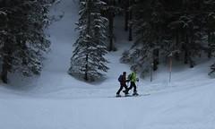 randonneurs (bulbocode909) Tags: valais suisse champexlac randonneurs skiderandonnée ski montagnes nature forêts hiver neige vert