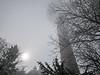 Spooky (KalleKrabowsky) Tags: winter forrest taunus hohe wurzel