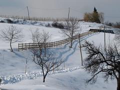 Zimska idila / Winter idyll (Damijan P.) Tags: zima winter sneg snow slovenija slovenia prosenak