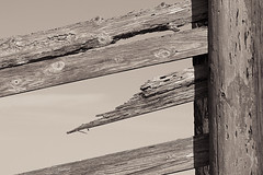 IMG_2667 (vyhphotography) Tags: wood fence canoneos80d monochrome sepia pointreyes california