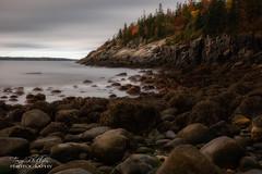 Low Tide (Tony Phillips Photography) Tags: acadianationalpark maine autumn fall fallcolor landscape lowtide outdoors scenery travel