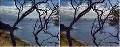 Maalaea Bay II (turbguy - pro) Tags: 3d stereo crosseye maui fujiw3 crosseyes crossview