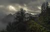 Alpine Path (Netsrak) Tags: kanzelwand fellhorn kleinwalsertal oberstdorf gebirge alpen schnee nebel wolke natur licht grün